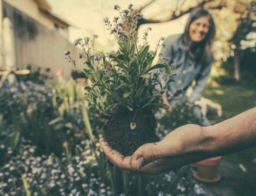 9 Gründe, wieso Gartenarbeit gut für die Gesundheit ist!